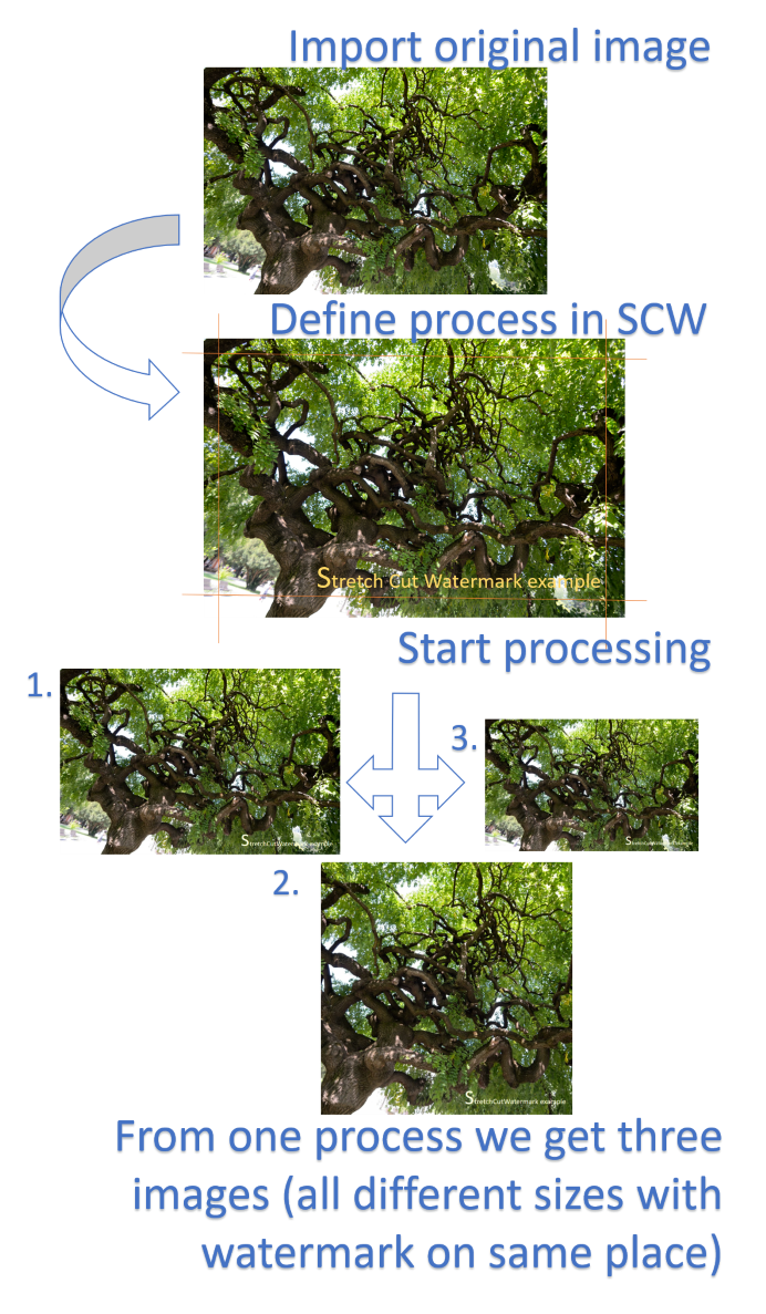 Principal scheme of image processing